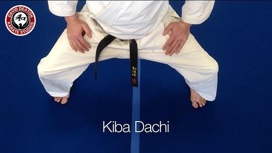 Kiba Dachi Karate Stance