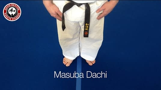 Wado Ryu Karate Stance Masuba Dachi