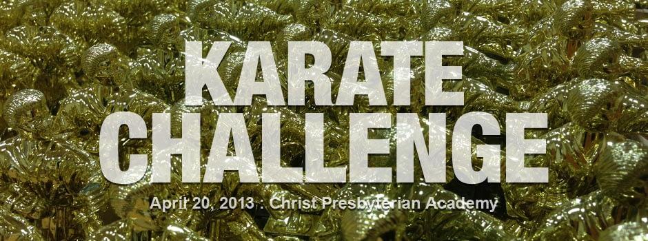 karate-challenge-2013-04-20_00