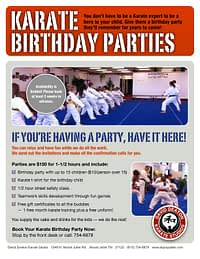 Karate Birthday Party Flyer