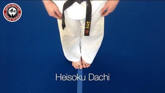Wado Ryu Karate Stance Heisoku Dachi