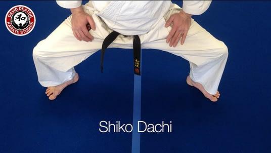 Shiko Dachi Karate Stance