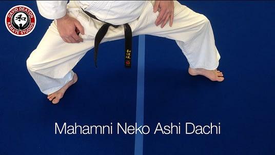 Mahamni Neko Ashi Dachi Karate Stance